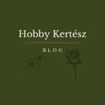 Hobby Kertesz